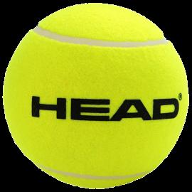 Head Giant Inflatable Ball